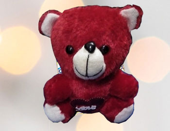 Small Teddy; Send your loved one with this amazing gift hamper of teddy bear(Color may vary)